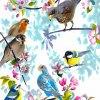 Alla fåglar kommit ren